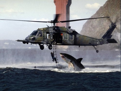 Great White Shark Attacks Helicopter